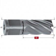Silver-line 25, 20.155